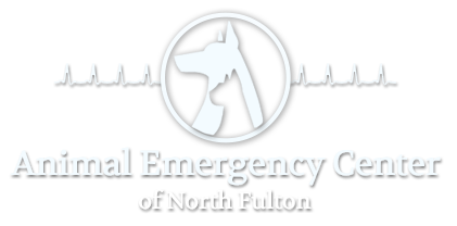 Animal Emergency Center of North Fulton